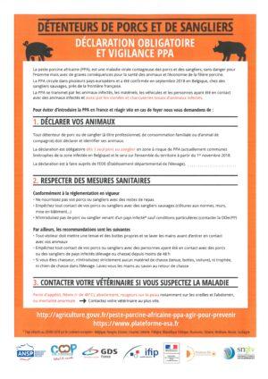 Suite à la découverte de la Peste Porcine Africaine (PPA) en Belgique, la déclaration de détention de porc et de sanglier est obligatoire en France – La PPA est sans danger pour l'homme.