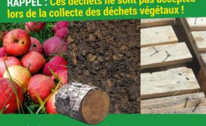 Rappel des déchets non acceptés à la collecte des déchets végétaux.